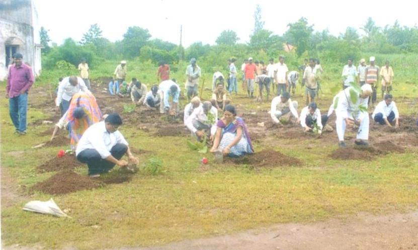 tree plantation at school report essay